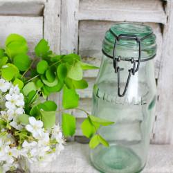 Bocal Marque L'IDEALE Vert