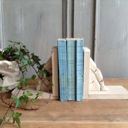 Serre-livre Patiné Lin Rose