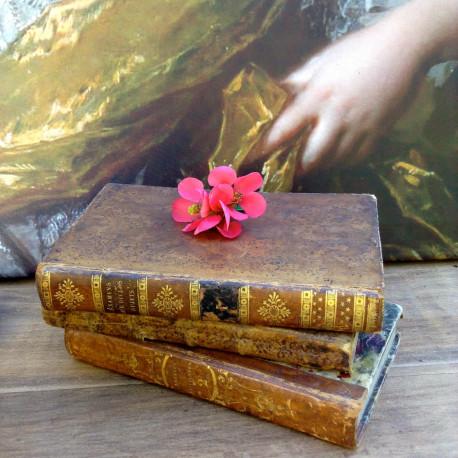 Lot de Livres Anciens Reliés