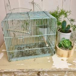 Cage Oiseaux en Métal Vert Amende