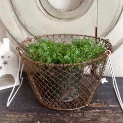 Vieux Panier à Salade